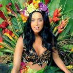 Clipes da Katy Perry inspiram temas